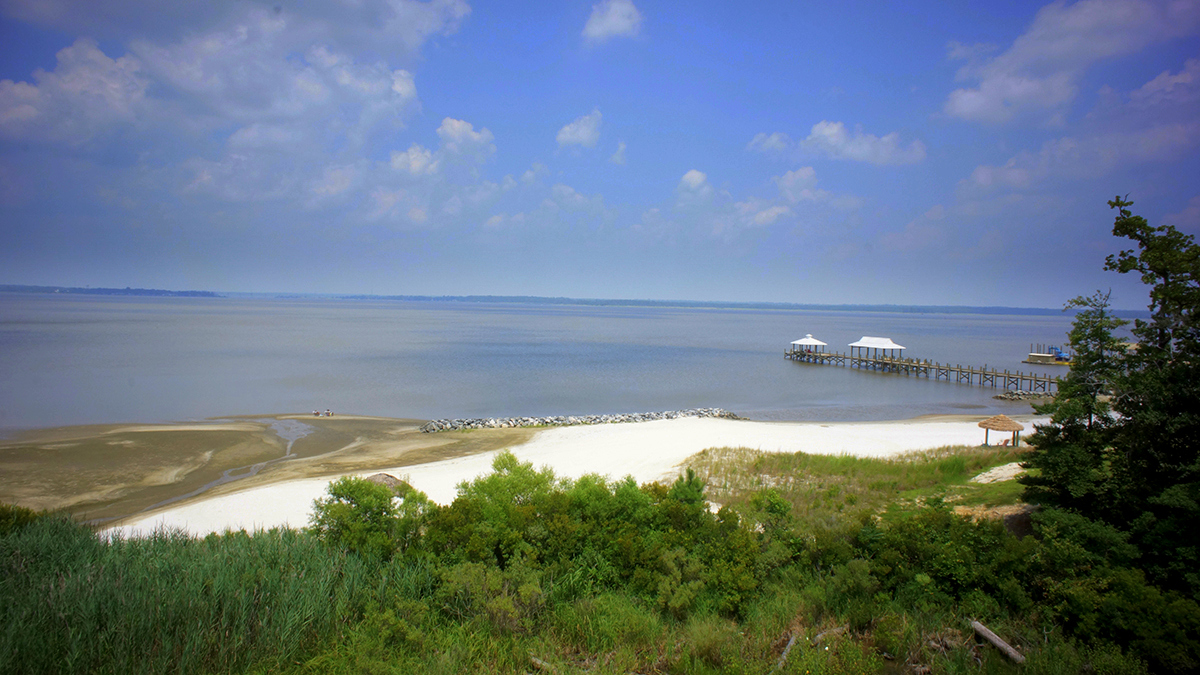 Exclusive Estate Lot in the Shores of York!